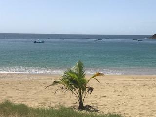 Thalassophile Reflections: Castara, Tobago